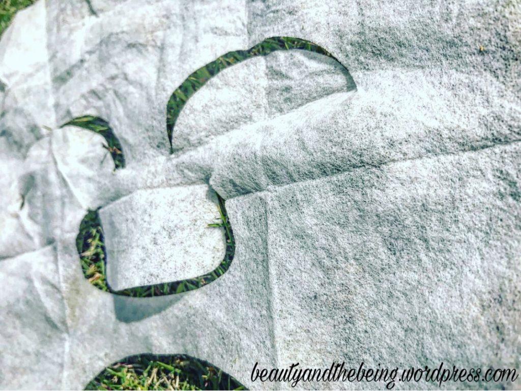 purederm-green-tea-collagen-mask-closer-look